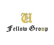 fellow group logo renovado